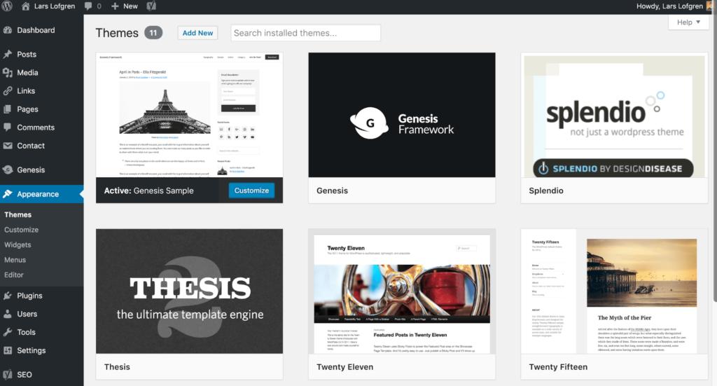 Gestão de Temas WordPress