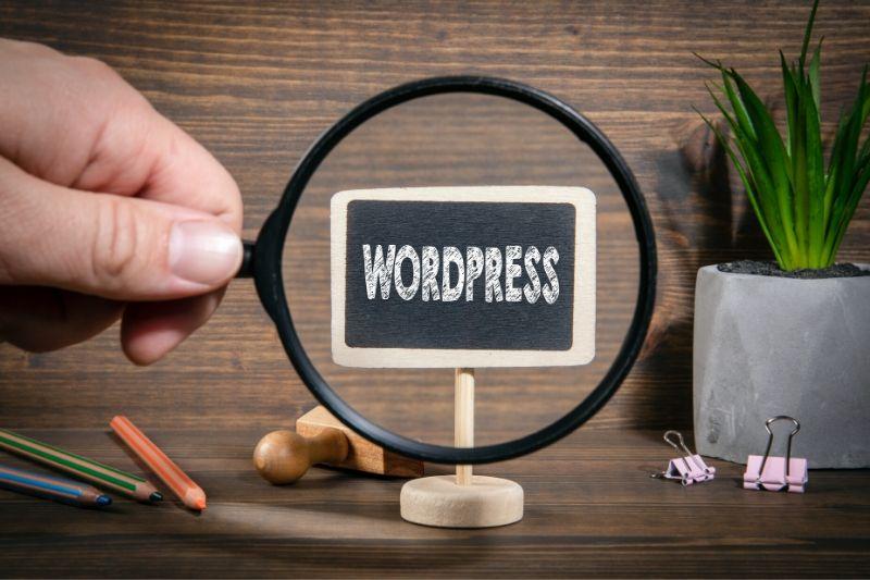 chercher thème wordpress